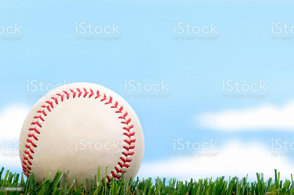 New Baseball in Grass against blue sky stock photo