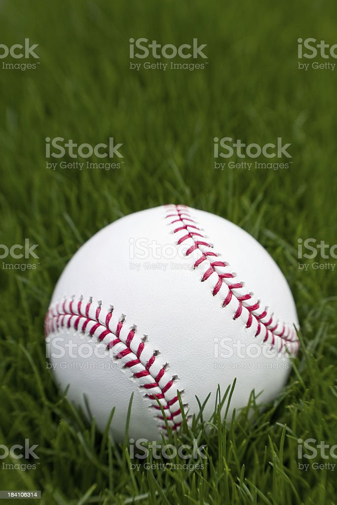New Baseball in Grass, Selective Focus royalty-free stock photo