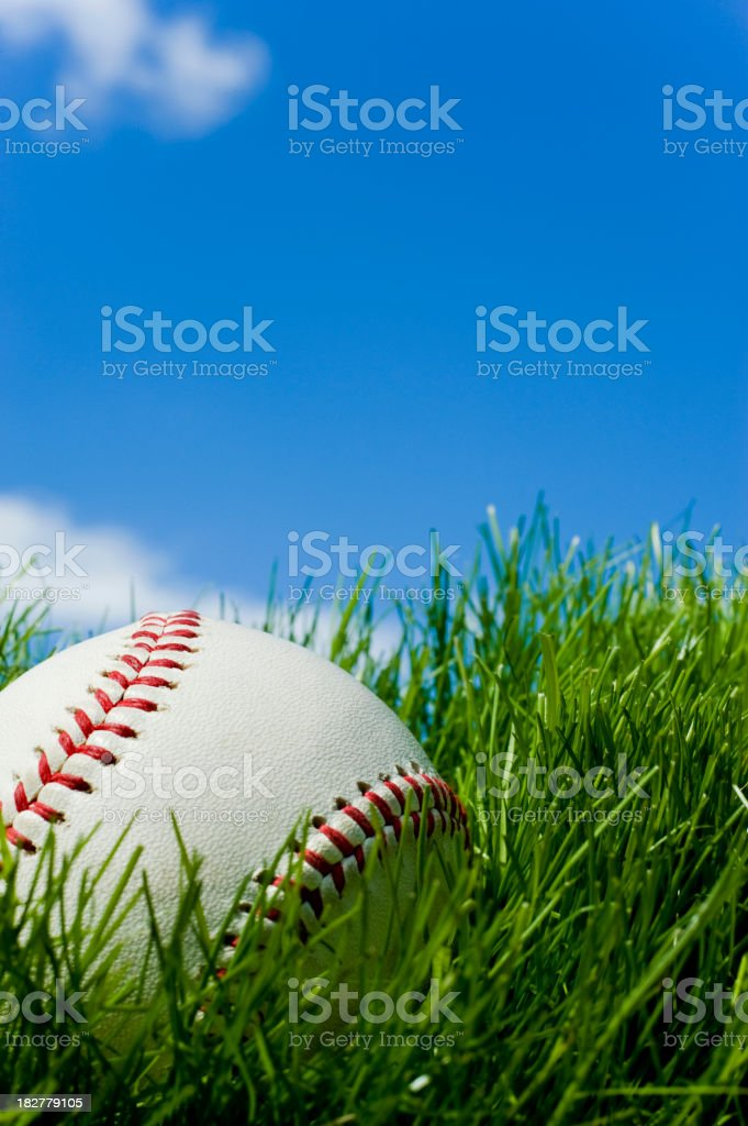 New Baseball sitting in green grass stock photo