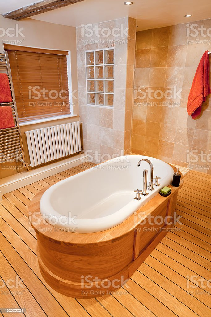 New Bathroom & Shower royalty-free stock photo