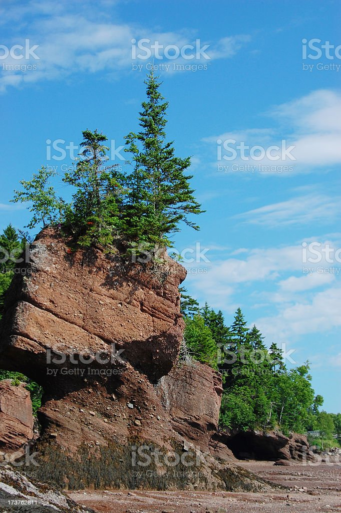New Brunswick coastline at low tide royalty-free stock photo