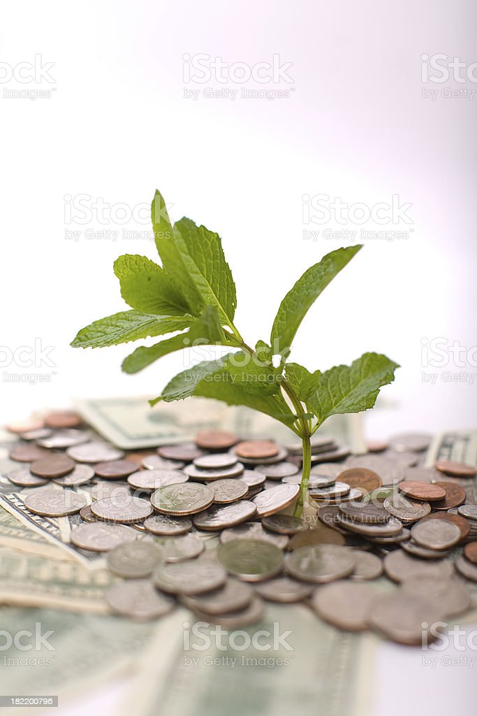 new business growth royalty-free stock photo