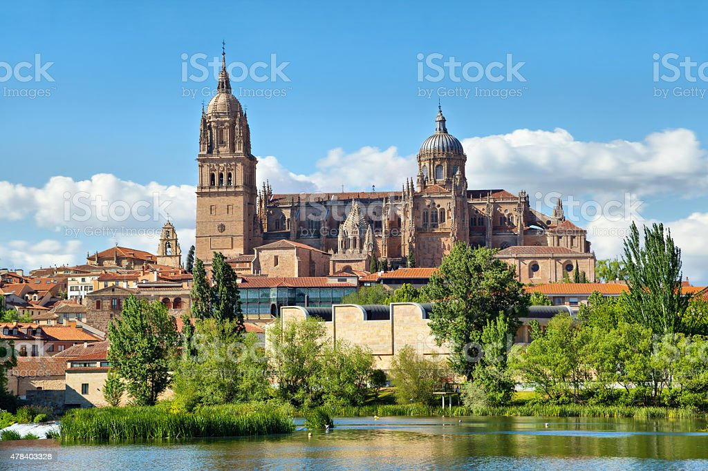 New Cathedral in Salamanca - view from river side stock photo