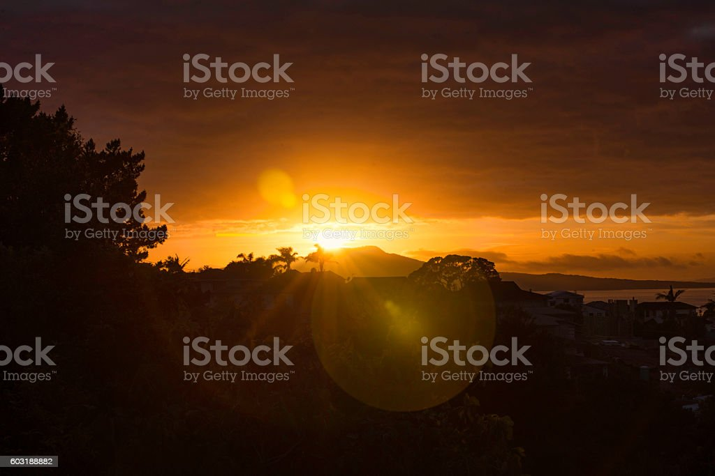 New day with flare stock photo