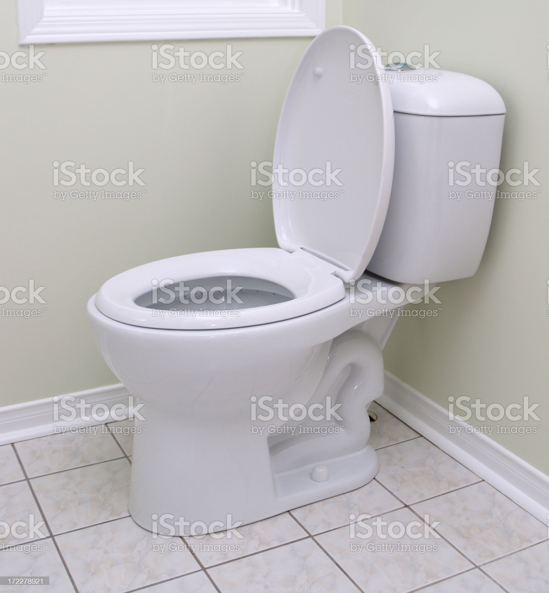 New dual flash water efficient model toilet royalty-free stock photo
