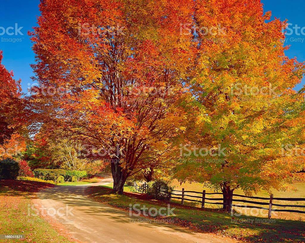 New England autumn country road stock photo