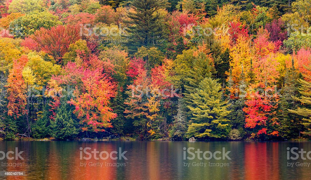 New England Autumn Foliage stock photo