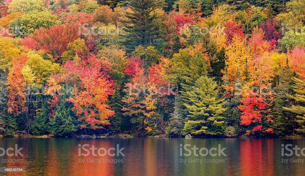 New England Autumn Foliage stock photo