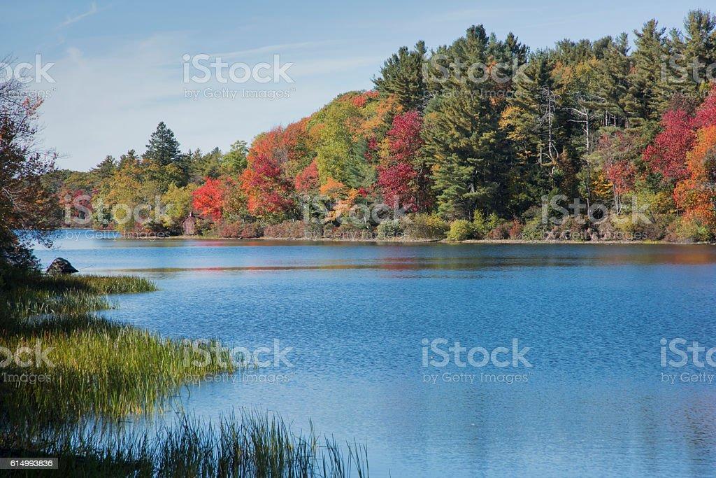 New England Brilliant fall foliage stock photo