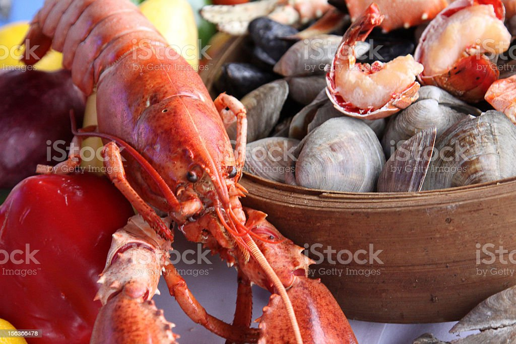 lobster and clams stock photo