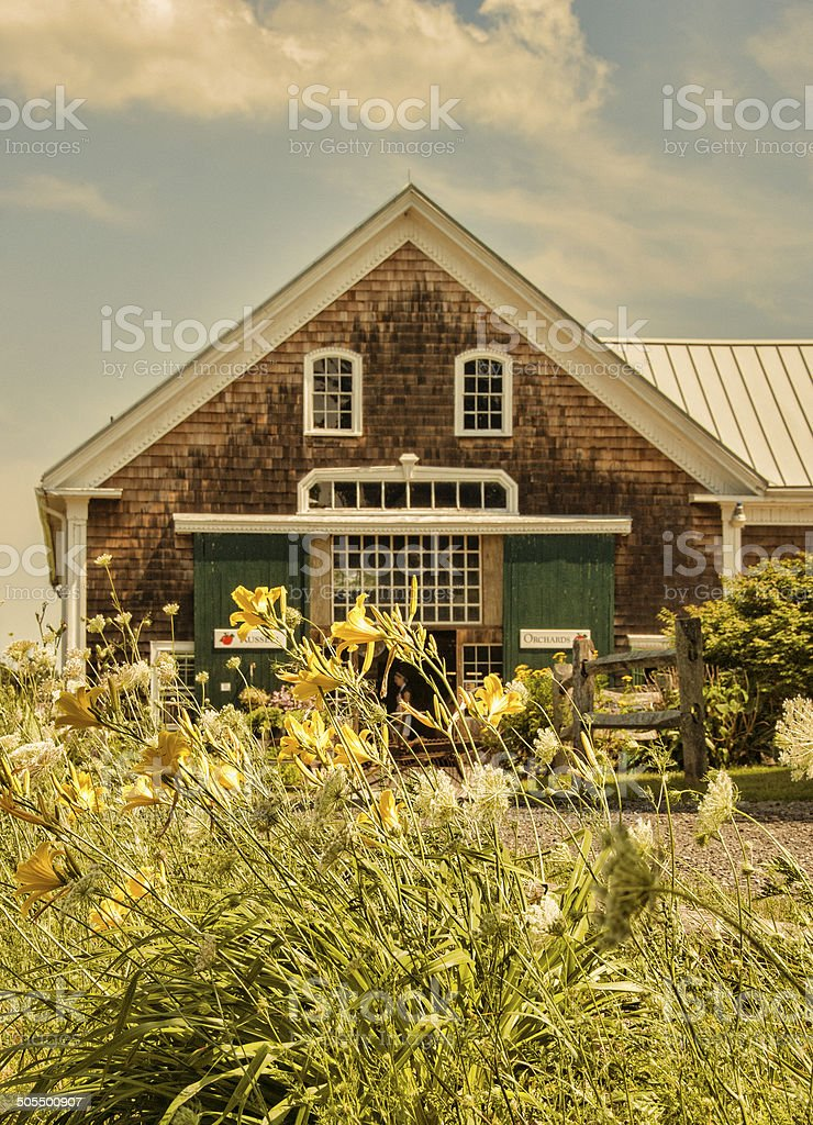 New England Farm House with Tiger Lillies in the foreground stock photo