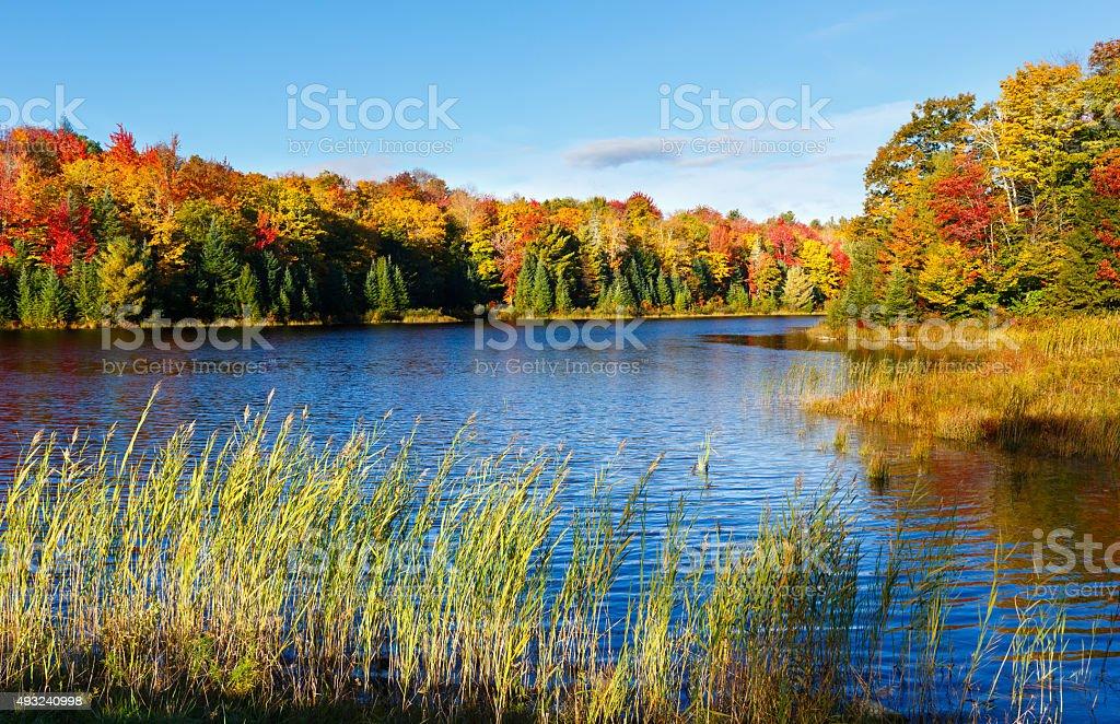 New England Pond with Autumn Foliage stock photo