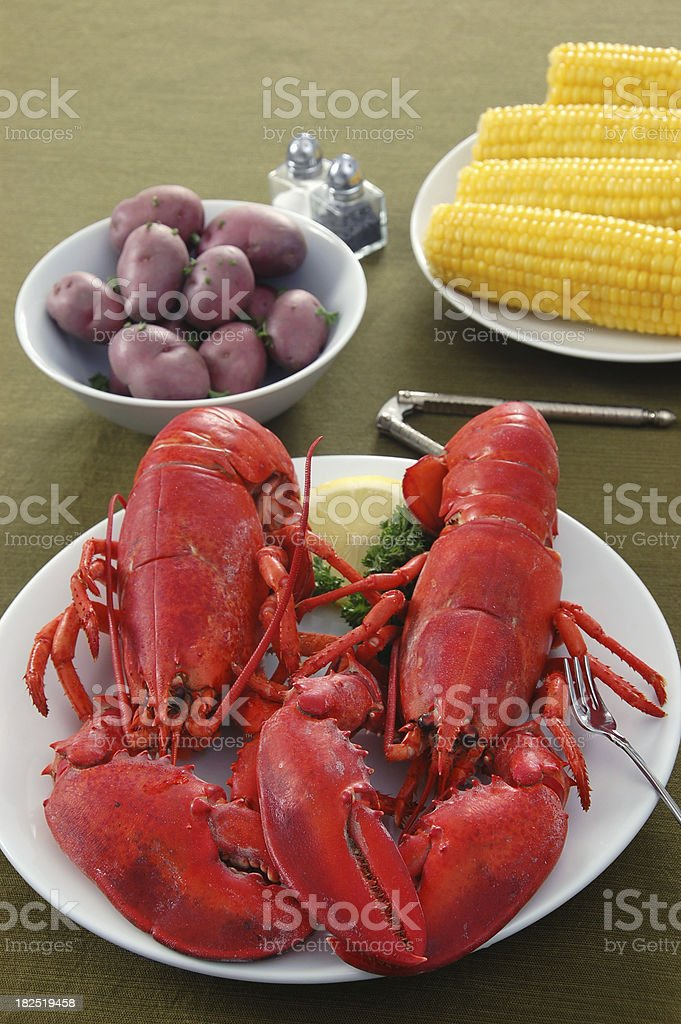 New England Twin Lobster Dinner royalty-free stock photo