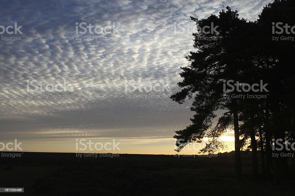 new forest sunrise beaulieu rd stock photo