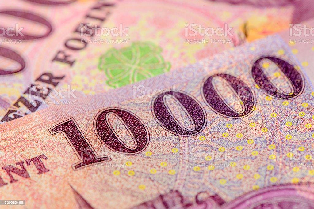 new forint stock photo