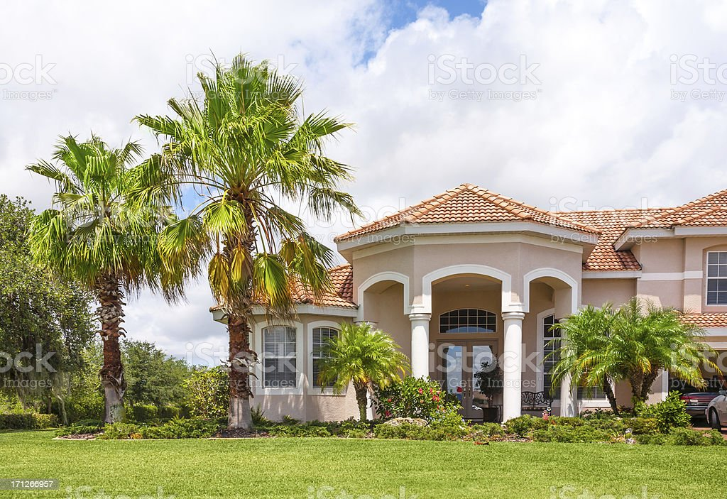 New Home with Palm Trees and Tropical Foliage stock photo