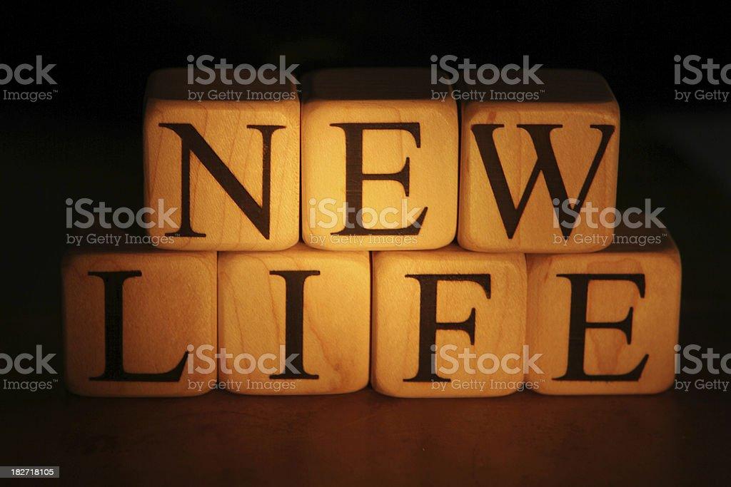 New Life - Building Blocks royalty-free stock photo
