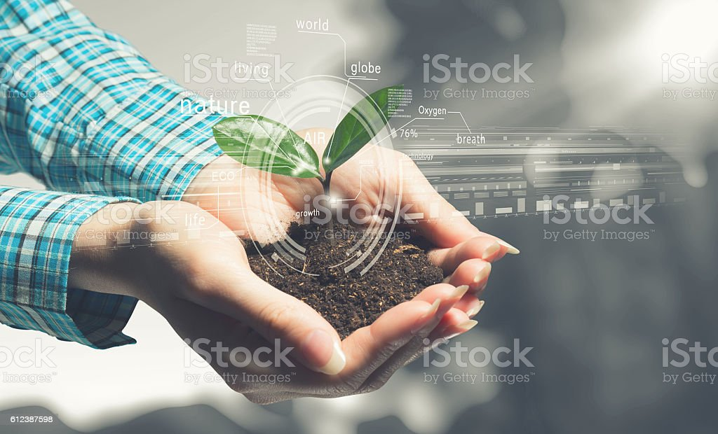 New life in your hands . Mixed media stock photo
