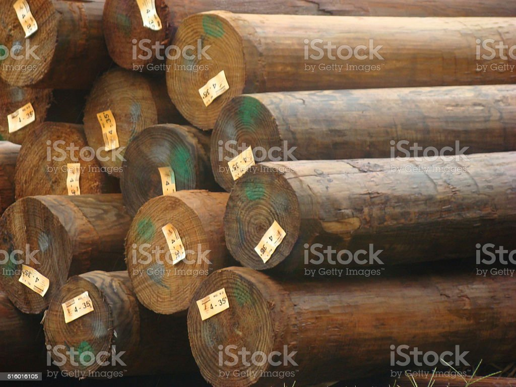 New lumber logs stock photo