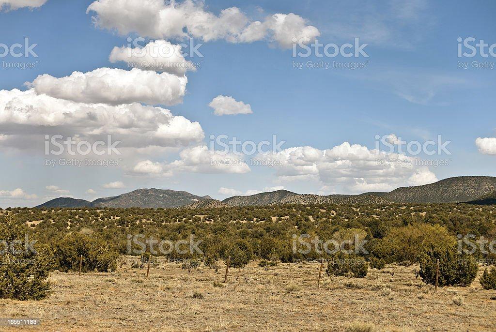 New Mexico Desert Landscape stock photo