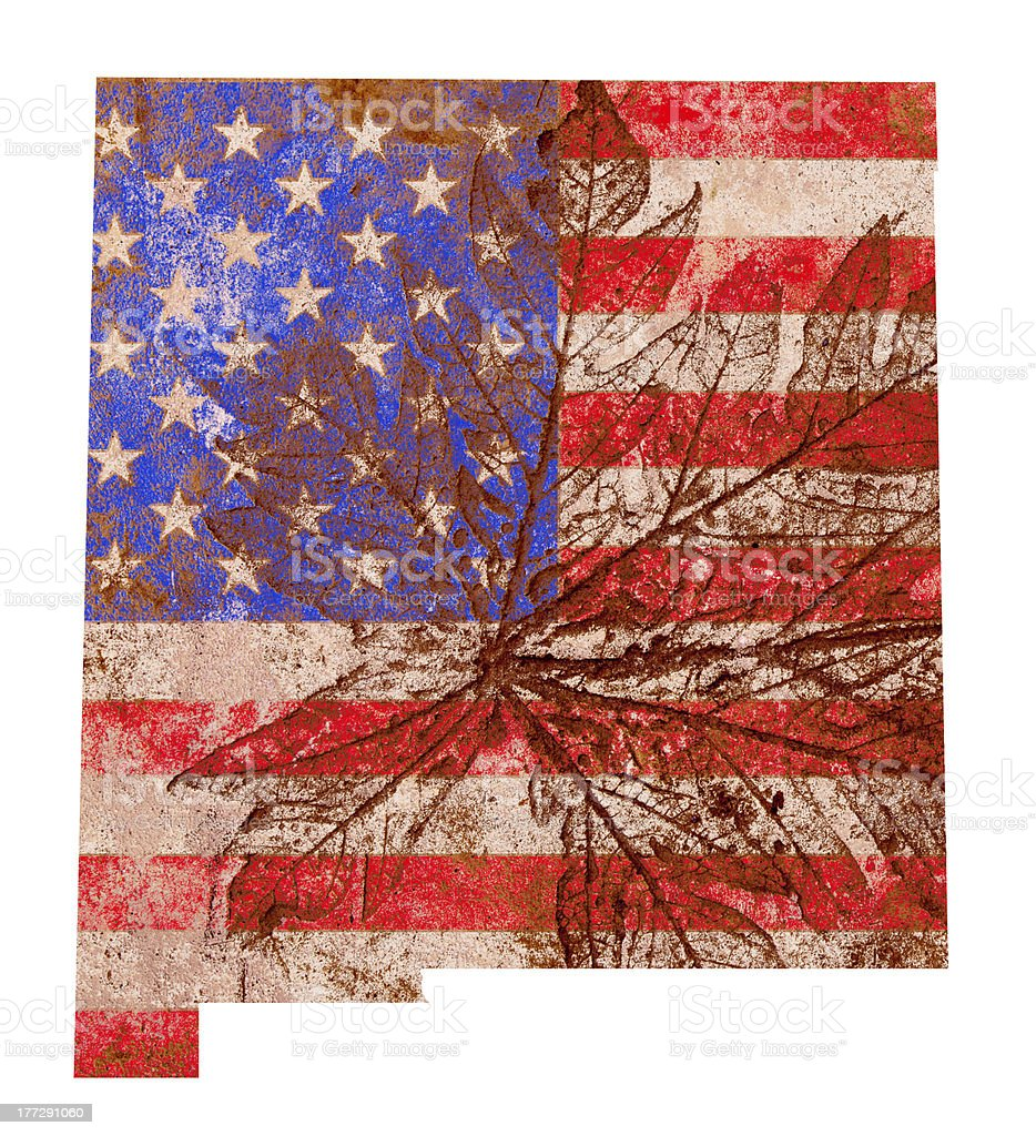 New Mexico State Map Flag Pattern stock photo
