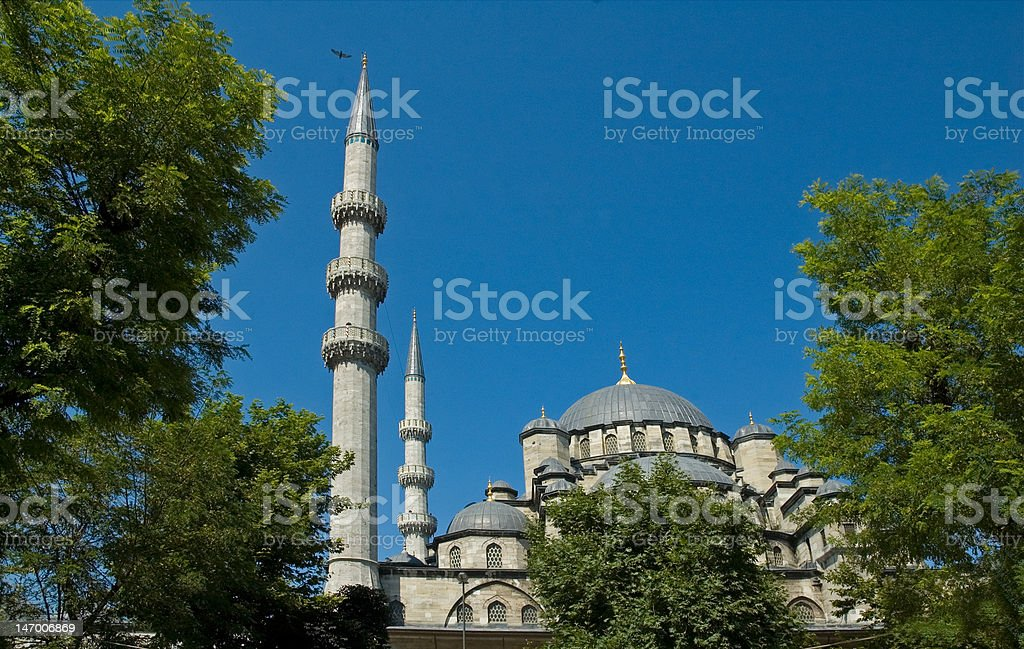 New Mosque, Istanbul, Turkey royalty-free stock photo