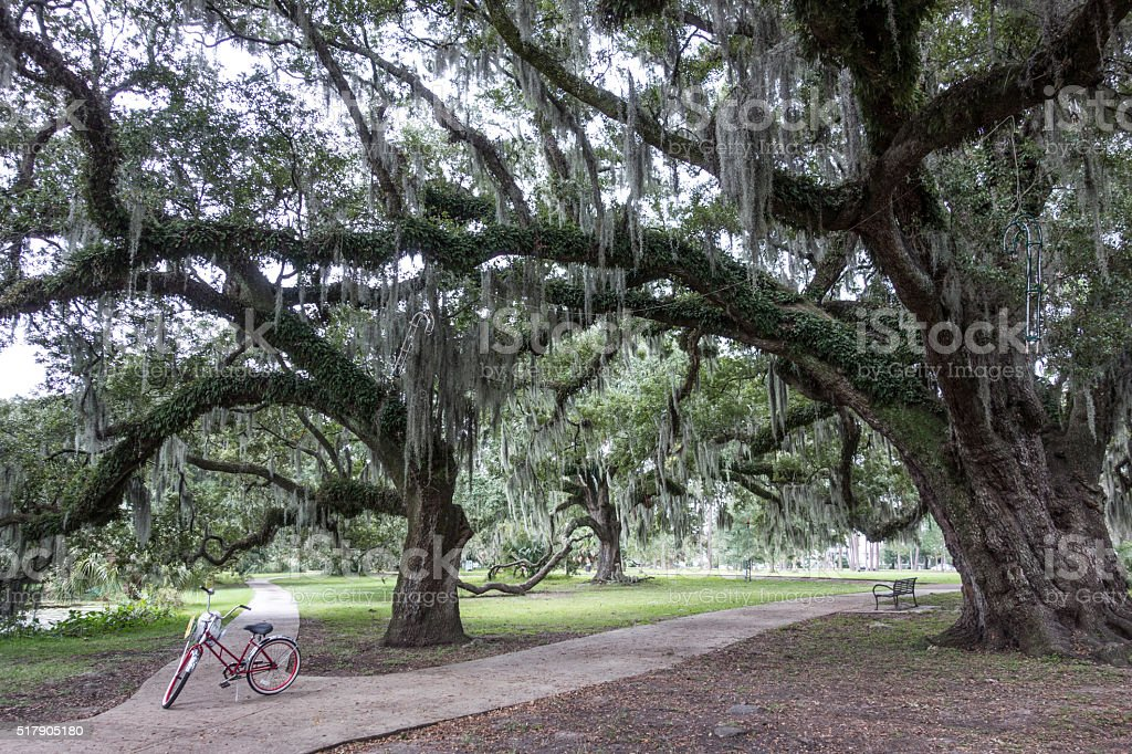 New Orleans City Park stock photo