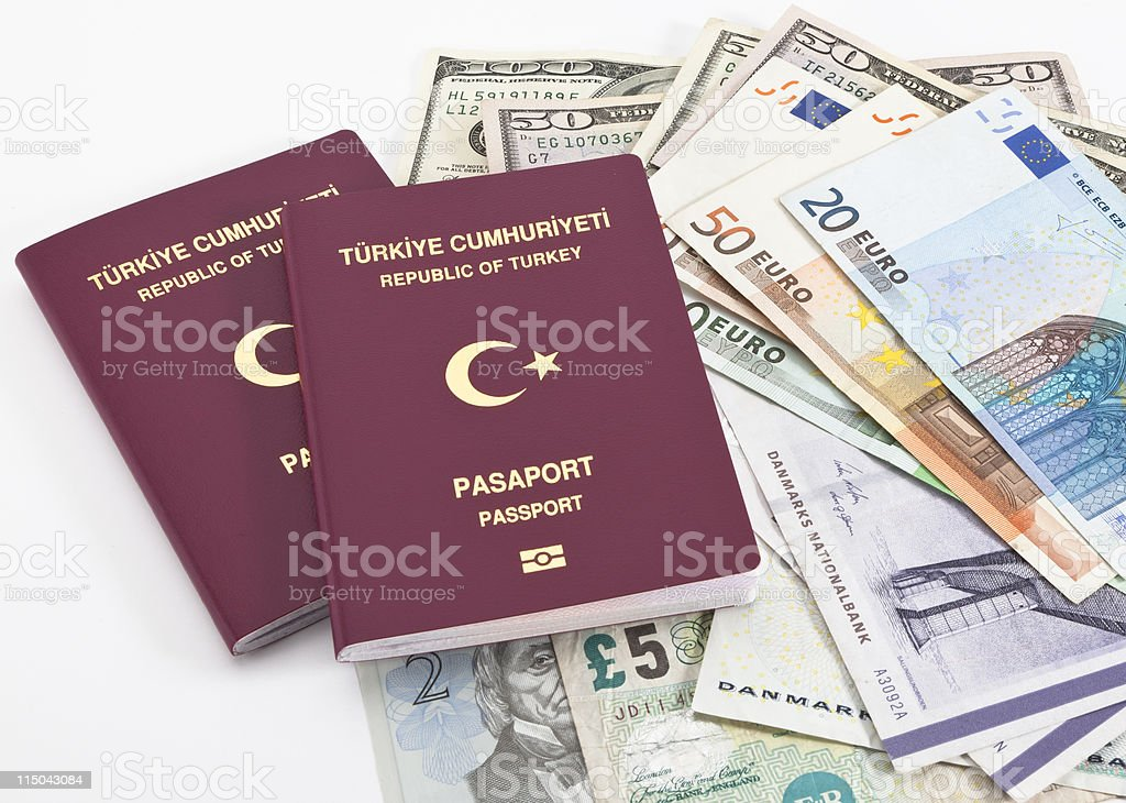 New passport with money royalty-free stock photo