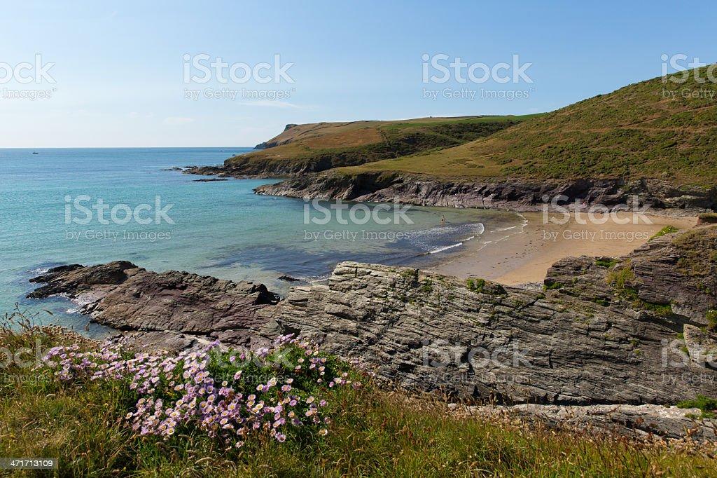 New Polzeath beach and Cornwall coast royalty-free stock photo