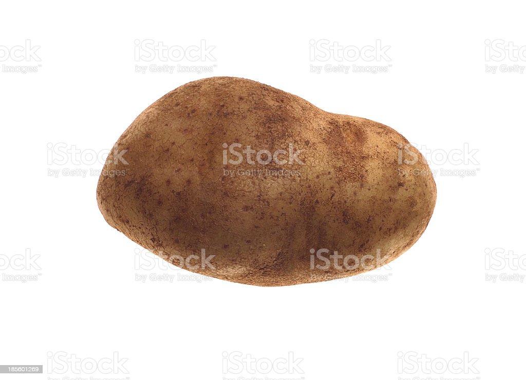 New potato isolated on white background close up royalty-free stock photo
