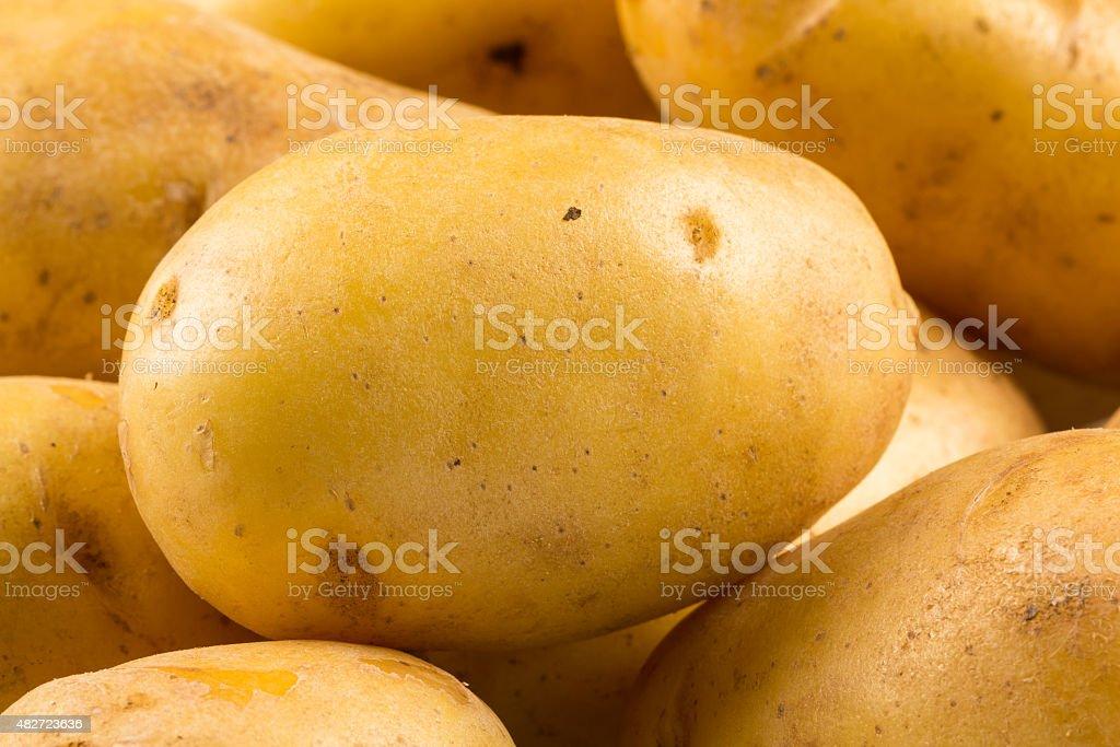 New potato isolated stock photo