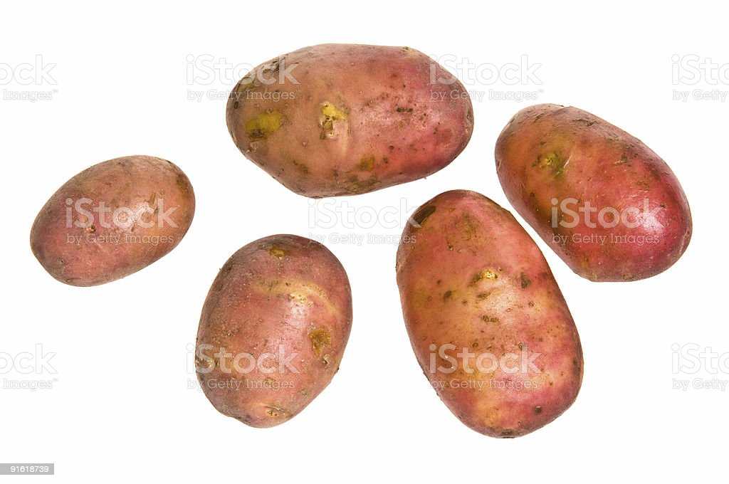 new potatoes royalty-free stock photo