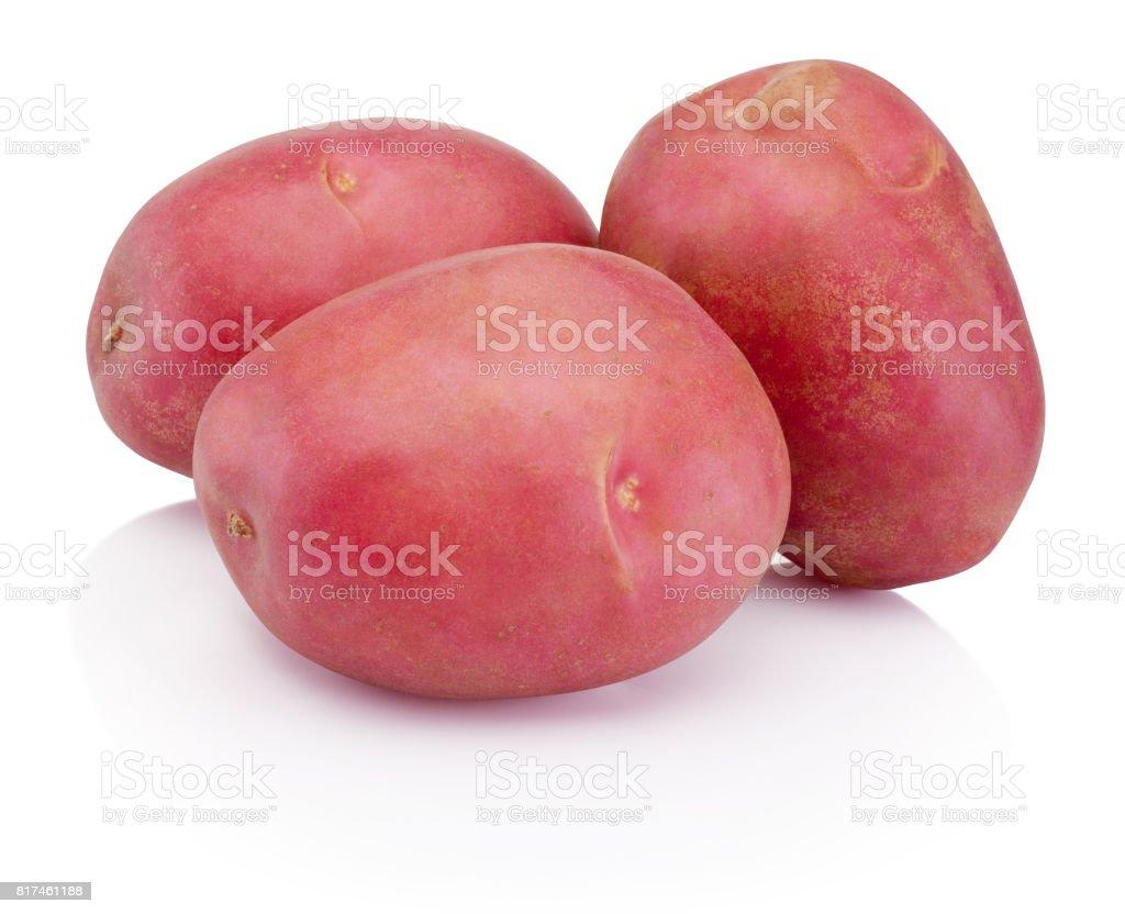 New red potato isolated on white background stock photo