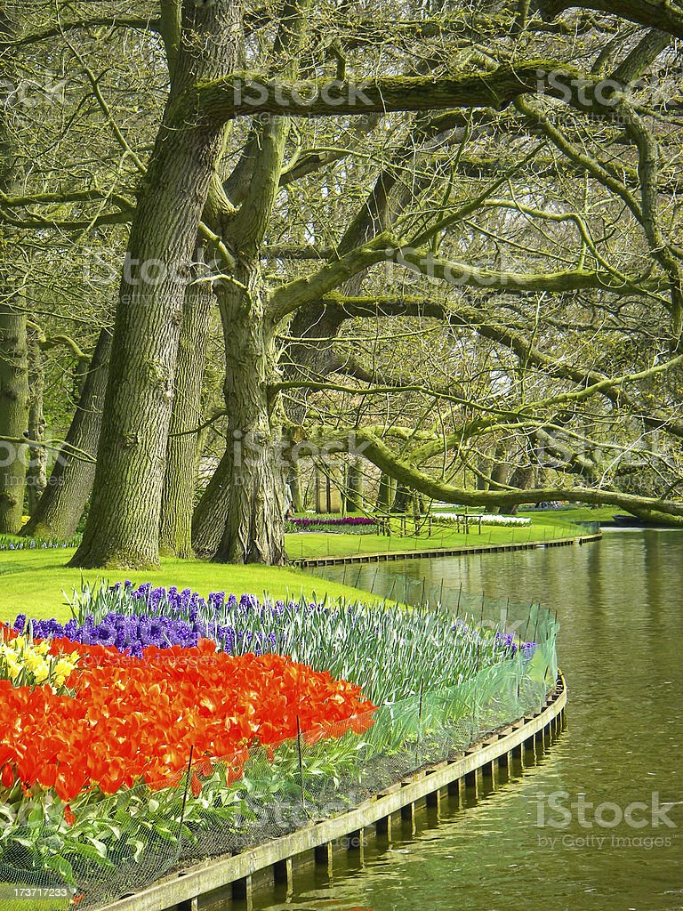New spring flowers and pond in Keukenhof gardens Lisse Netherlands. royalty-free stock photo