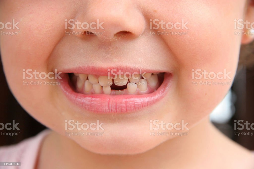 New tooth stock photo