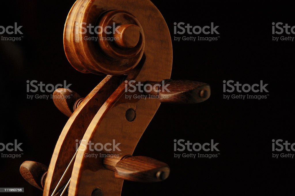 New Violin Scroll with Rosewood Tuning Pegs on Black stock photo