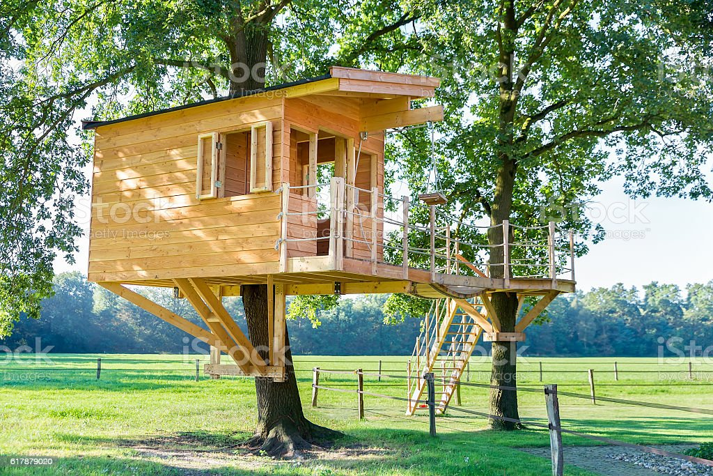 New wooden tree house in oak trees stock photo