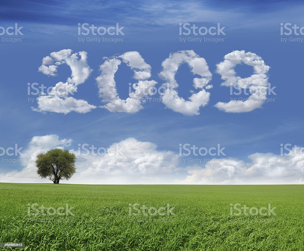 New Year 2009 And Field royalty-free stock photo