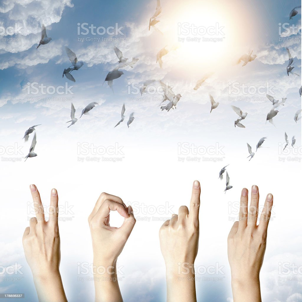 new year 2013 abstract with doves flying royalty-free stock photo