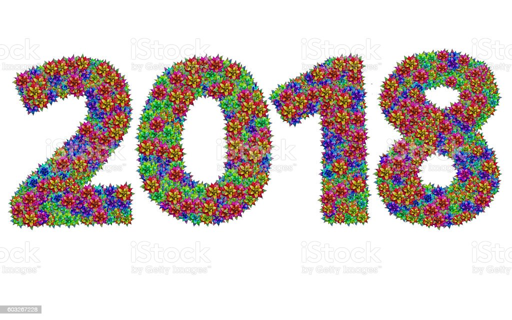 New year 2018 made from bromeliad flowers stock photo