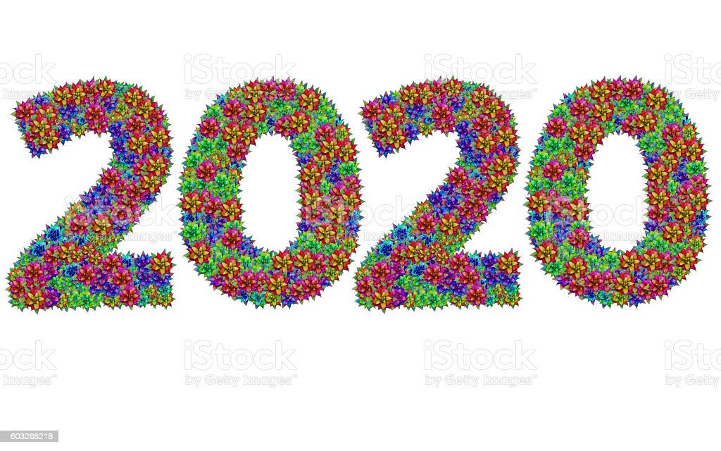 New year 2020 made from bromeliad flowers stock photo