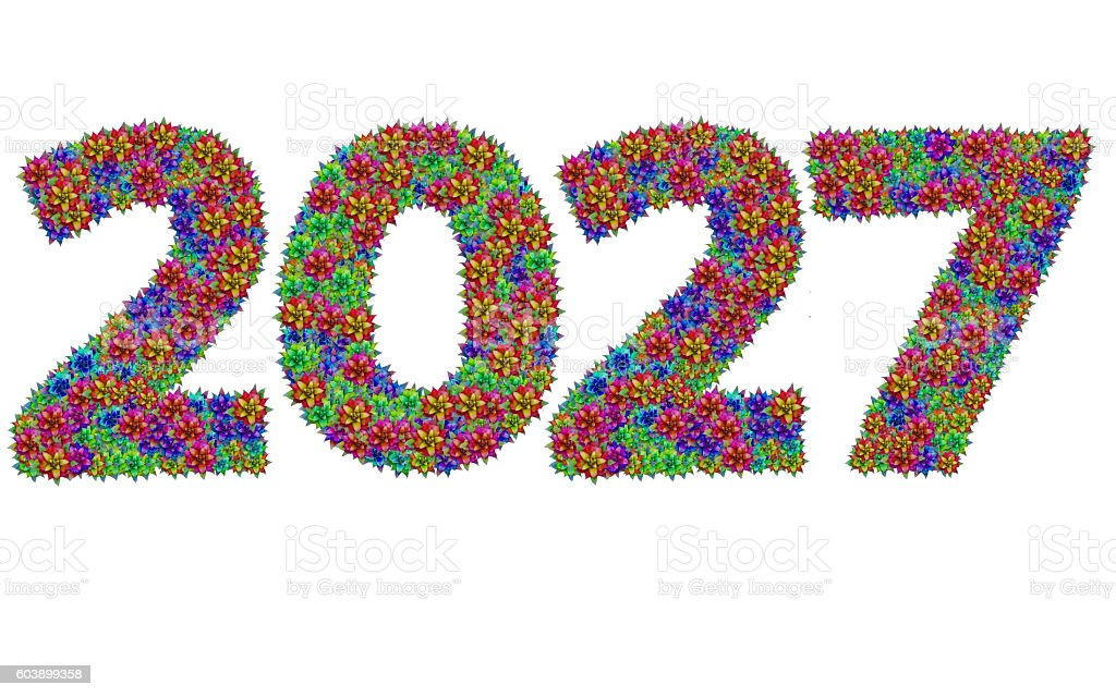 New year 2027 made from bromeliad flowers stock photo