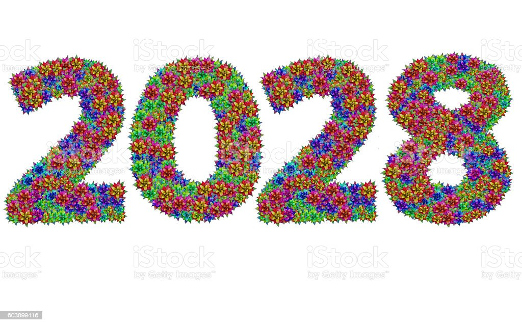 New year 2028 made from bromeliad flowers stock photo
