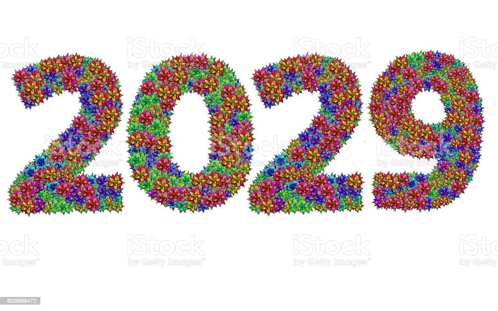 New year 2029 made from bromeliad flowers stock photo