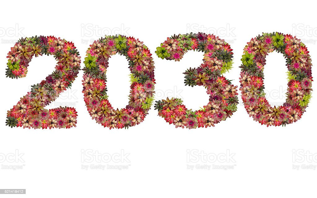 New year 2030 made from bromeliad flowers stock photo