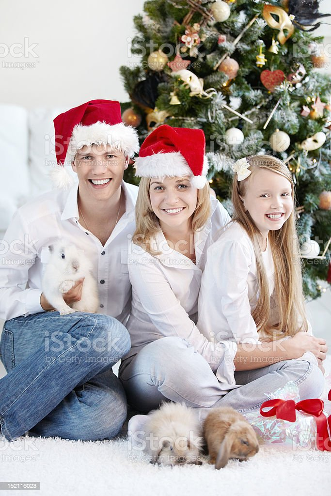 New Year at home royalty-free stock photo