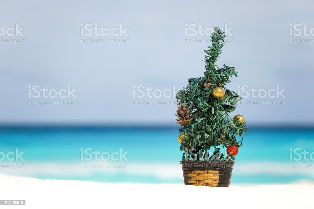 New year fir tree on sandy beach stock photo