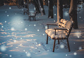 New year's magic. Snow in a deserted Park