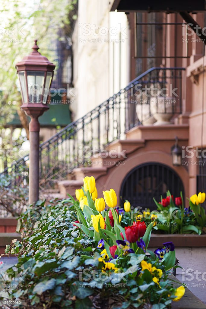 New York Brownstone and flowers stock photo