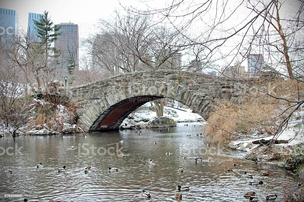 New York Central Park in winter stock photo